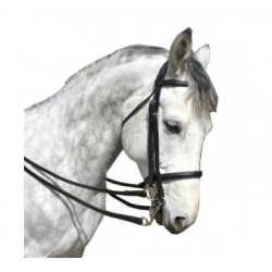 BRIDE DRESSAGE ECO