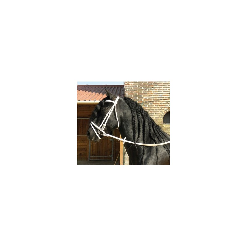 BRIDON CUIR TRAIT