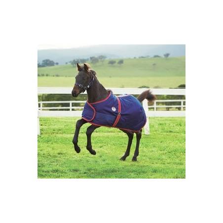 Couverture Exterieur Foal Weatherbeeta