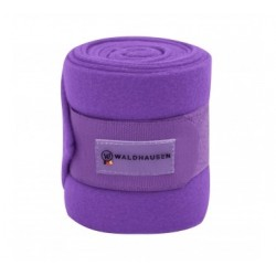BANDES POLAIRES W
