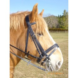 Bride De Dressage Cheval De Trait