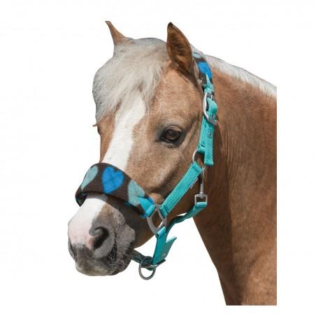 Licol Pony Love Shetty