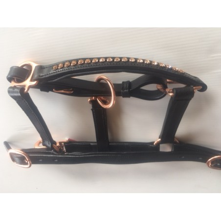 Licol Foal Cuir Rose Gold Double Réglage