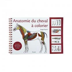 Anatomie Du Cheval A Colorier