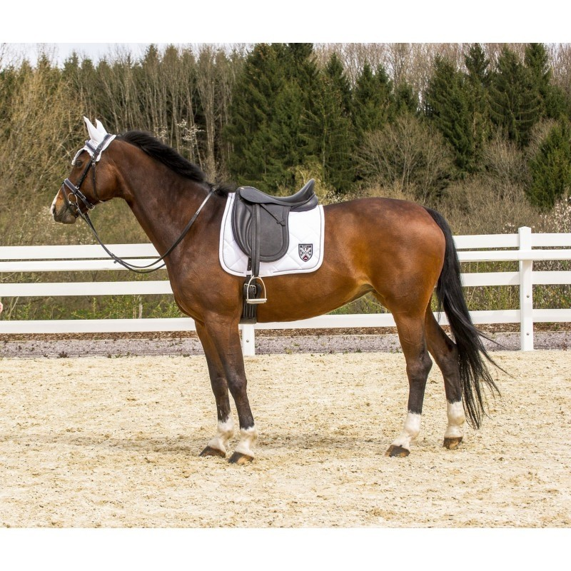 SELLE ERIC THOMAS DRESSAGE MADRID