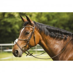 Bridon Riding World Clincher Fin Muserolle Croisee