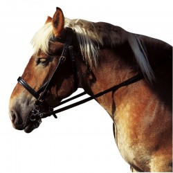 BRIDON CORTINA CHEVAL DE TRAIT