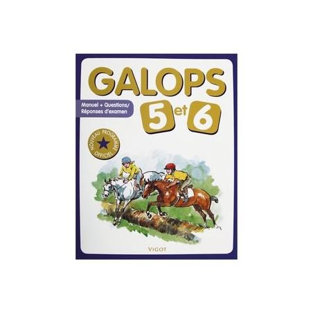 GALOP 5 ET 6 VIGOT